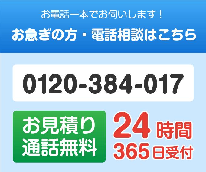 0120-384-017